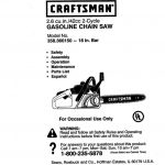 Chainsaw Owner's Manual