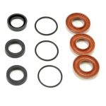 Pressure Washer Pump Seal Kit